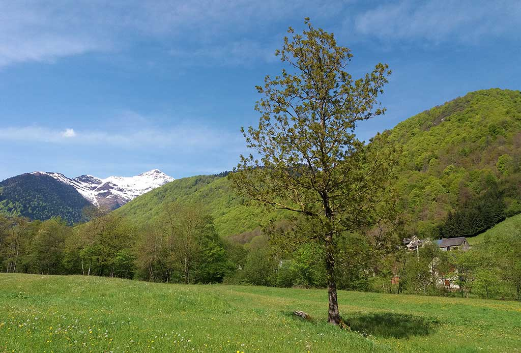 Magnifique balade avec une vue splendide sur le Montaigu